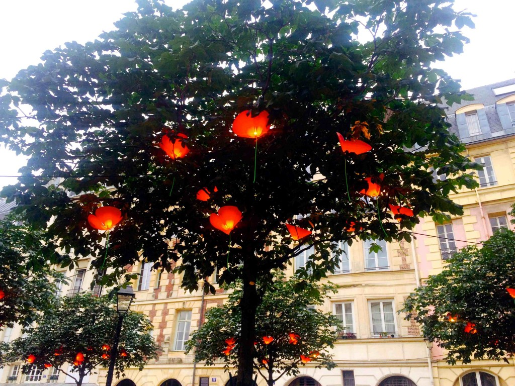 coquelicots-place-dauphine