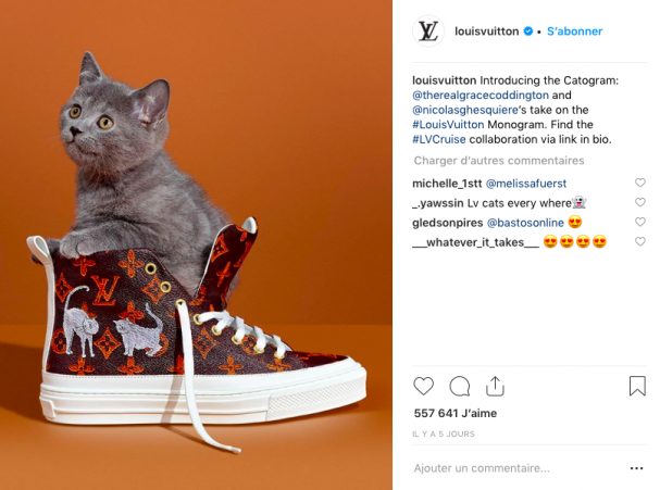 sneakers vuitton cat